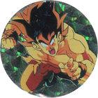 Pog n°11 - Sangoku - Dragon Ball Z - Caps - Panini