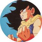 Pog n°14 - Sangohan - Dragon Ball Z - Caps - Panini