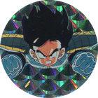 Pog n°34 - Sangohan - Dragon Ball Z - Caps - Panini