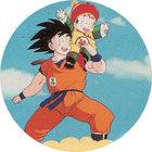 Pog n°62 - Sangoku & Sangohan - Dragon Ball Z - Caps - Panini