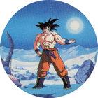 Pog n°13 - Sangoku - Dragon Ball Z - Caps Série 2 - Panini