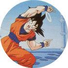 Pog n°14 - Sangoku - Dragon Ball Z - Caps Série 2 - Panini
