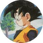 Pog n°27 - Sangoten - Dragon Ball Z - Caps Série 2 - Panini