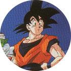 Pog n°38 - Piccolo & Sangoku - Dragon Ball Z - Caps Série 2 - Panini