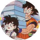 Pog n°51 - Sangohan & Sangoku - Dragon Ball Z - Caps Série 2 - Panini