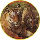 Pog n°7 - Tigres - Fort Boyard - Claps Le Vrai !