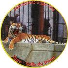 Pog n°8 - Tigre - Salle du trésor - Fort Boyard - Claps Le Vrai !