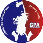 Pog n°4 - POG Classic Game - Global Pog Association (GPA)