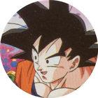 Pog n°9 - Sangoku - Dragon Ball Z - Caps Série 2 - Panini