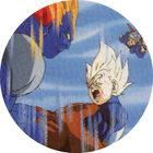 Pog n°11 - C-13 & Végéta - Dragon Ball Z - Caps Série 2 - Panini