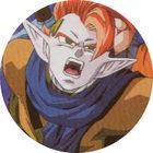 Pog n°29 - Tapion - Dragon Ball Z - Caps Série 2 - Panini