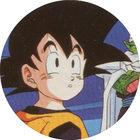 Pog n°39 - Sangoten - Dragon Ball Z - Caps Série 2 - Panini