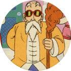 Pog n°47 - Tortue Géniale - Dragon Ball Z - Caps Série 2 - Panini