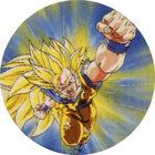 Pog n°50 - Sangoku - Dragon Ball Z - Caps Série 2 - Panini