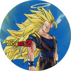 Pog n°7 - Sangoku - Dragon Ball Z - Power - Divers