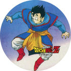 Pog n°13 - Sangohan - Dragon Ball Z - Power - Divers