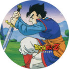 Pog n°14 - Sangohan - Dragon Ball Z - Power - Divers