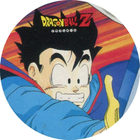 Pog n°15 - Sangohan - Dragon Ball Z - Power - Divers