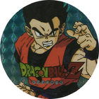 Pog n°16 - Sangohan - Dragon Ball Z - Power - Divers